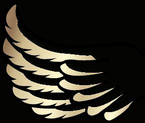 Engel auf Erden - Flügel Links